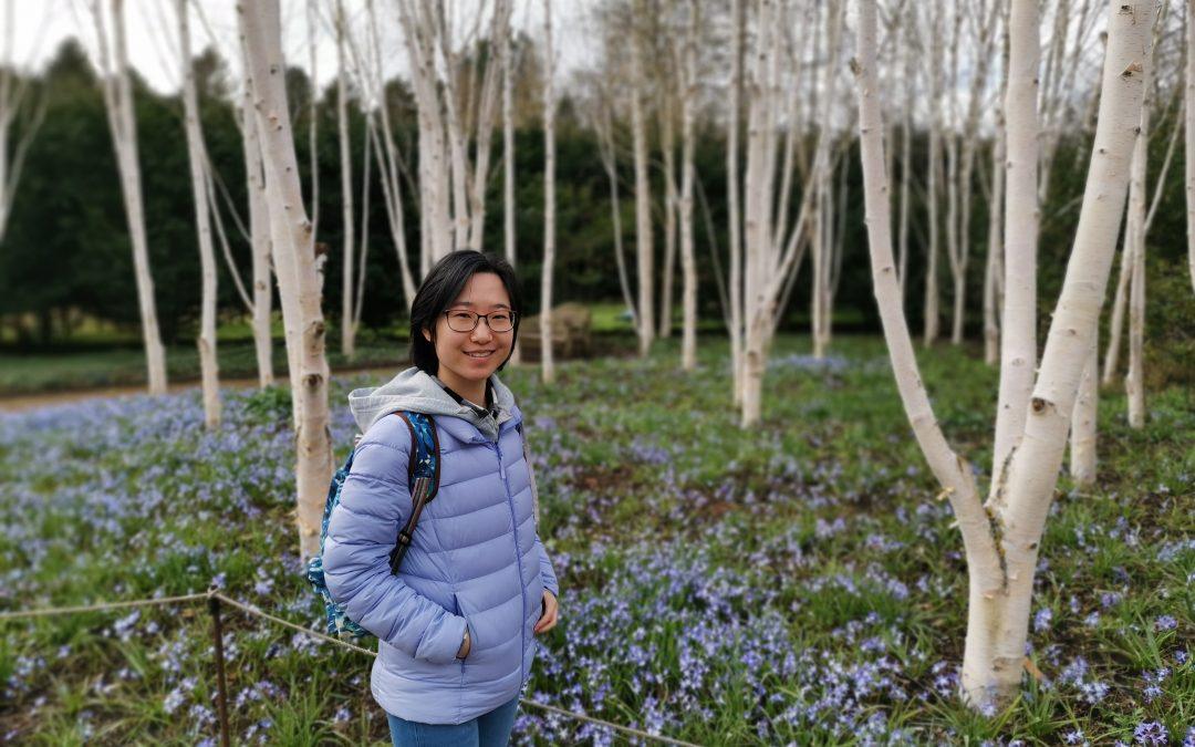 Radio Natura Episode 6- Yuan Pan: Environmentalism in Japanese Animated Film